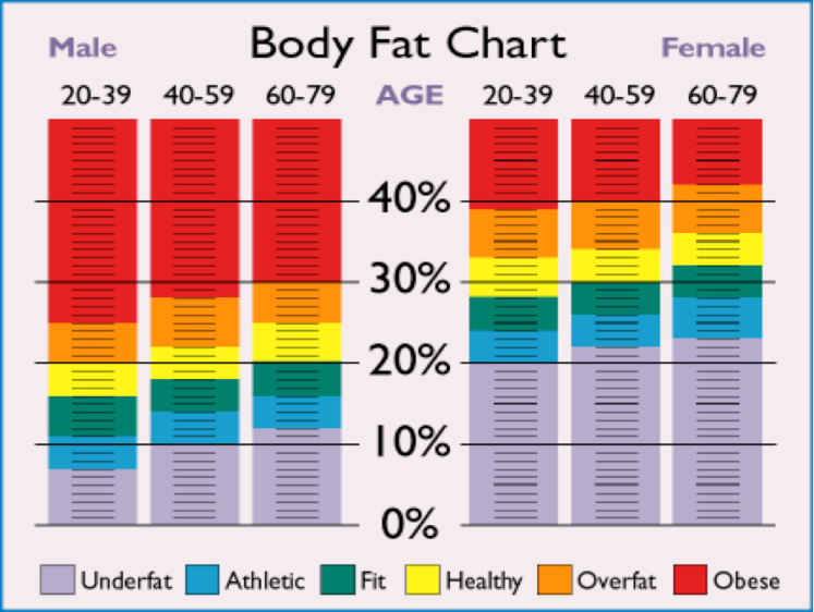 healthy body fat percentage chart female